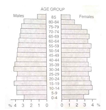age sex pyramid of usa in Launceston